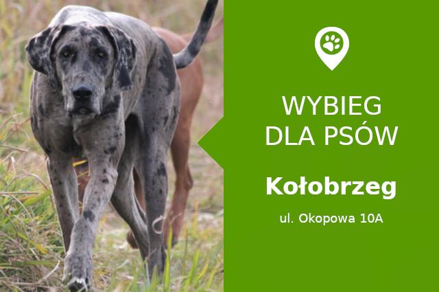 Psi park Kołobrzeg