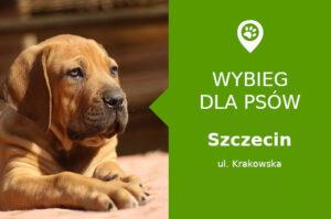 Psi park Szczecin, Krakowska na zbiegu z Porońska, dzielnica Gumieńce, zachodniopomorskie