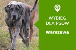Psi park Warszawa Augustówka Goczałkowicka