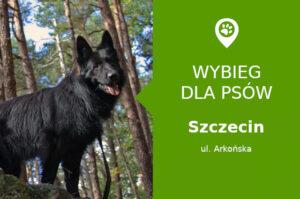 Wybieg dla psów Szczecin, Arkońska, dzielnica Niemierzyn, Las Arkoński, zachodniopomorskie