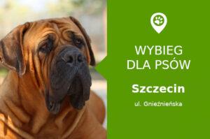 Wybieg dla psów Szczecin, Gnieźnieńska, dzielnica Pomorzany, zachodniopomorskie