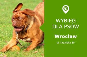 Wybieg dla psów Wrocław ul. Krynicka 35